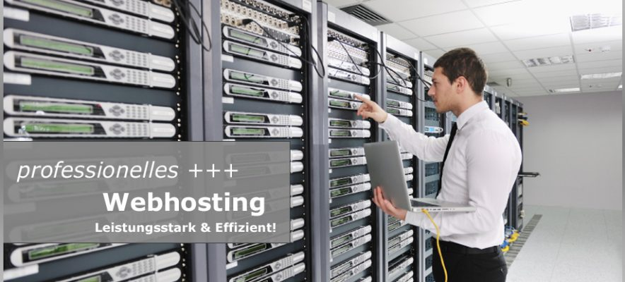 professionelles-webhosting